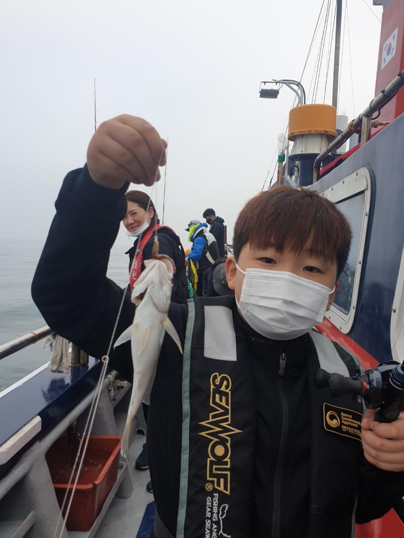 6월21일 대천항 챔피언호 백조기 마지막 탐사 다녀왔습니다.
