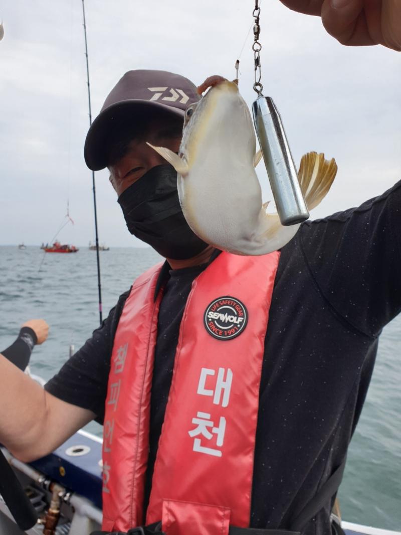 7월3일 대천항 챔피언호 씨알좋은 백조기 낚시 다녀왔습니다 (feat.수중전 쓰리콤보)