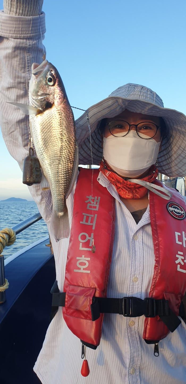 7월18일 대천항 챔피언호 11분 모시고 백조기 낚시 다녀왔습니다 (feat.씨알좋은 백조기)